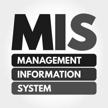MIS - Management Information System acronym, business concept background