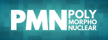 PMN - PolyMorphoNuclear acronym, concept background