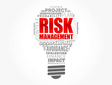 Risk Management light bulb word cloud collage, business concept background