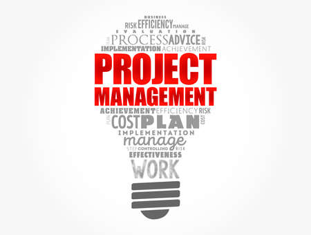 Project Management light bulb word cloud collage, business concept background Ilustração