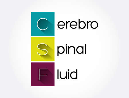 CSF - cerebrospinal fluid acronym, concept background