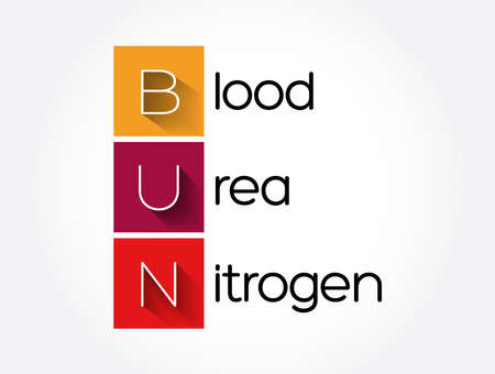 BUN - Blood Urea Nitrogen acronym, medical concept background