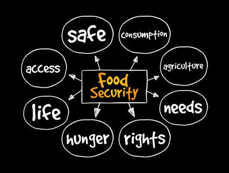 Food Security mind map, concept for presentations and reports