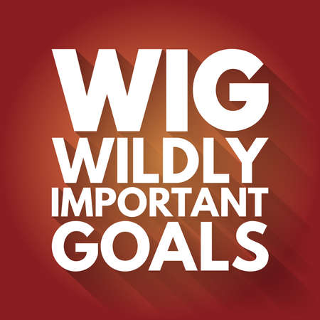 WIG - Wildly Important Goals acronym, business concept background