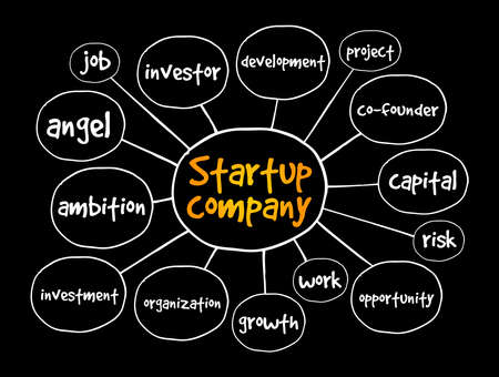 Startup company mind map, business concept for presentations and reports