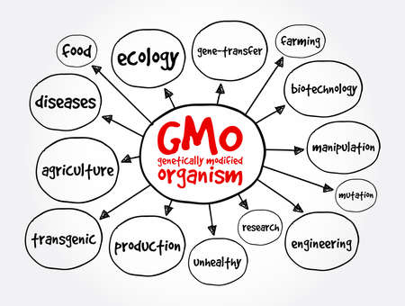 GMO - genetically modified organism mind map, concept for presentations and reports