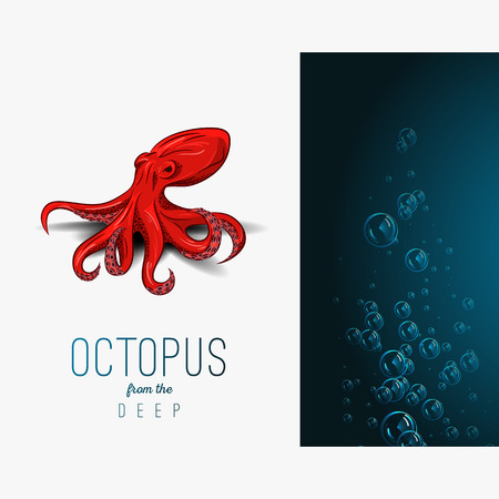 devilfish: Octopus in deep Vector color illustration on gradient background with decorative element.
