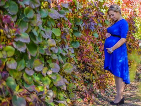 lovely pregnant woman: Portrait a lovely young blond pregnant woman with leaves background