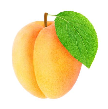 Rijpe oranje abrikoos met groen geïsoleerd blad Stockfoto