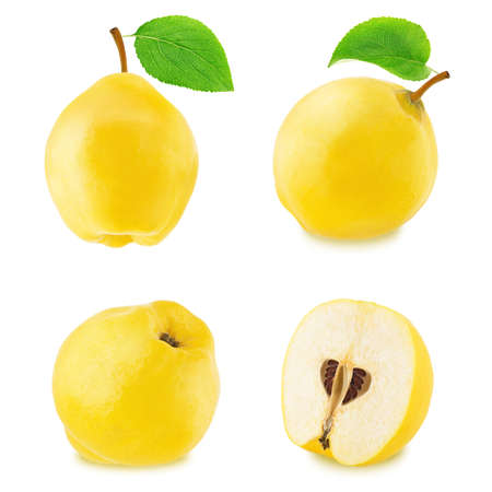 Set of different quinces isolated Stock Photo