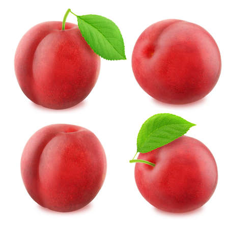 Set of juicy red plums isolated Stock Photo