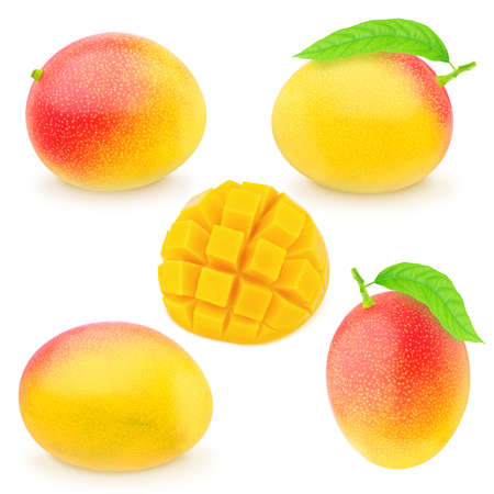 Set of juicy mangoes isolated on a white. Detailed retouch.