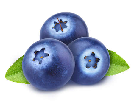 Heap of freshly picked blueberries with leaves isolated on white background. As design element.