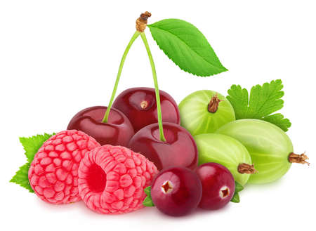 raspberry, cherry, gooseberry and cranberry