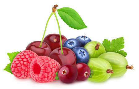 Multicolored composition with assortment of berries