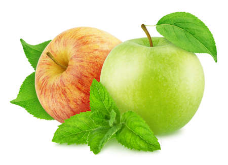 Composition with juicy apples and sprig of mint isolated on a white background