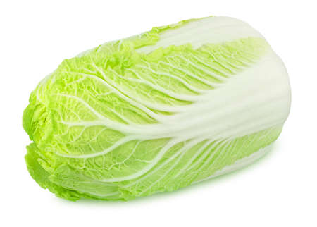 Fresh whole chinese cabbage isolated on a white background. Full depth of field.