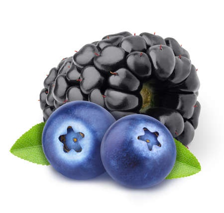Colourful composition with forest berries - blueberry and blackberry isolated on a white background with clipping path.