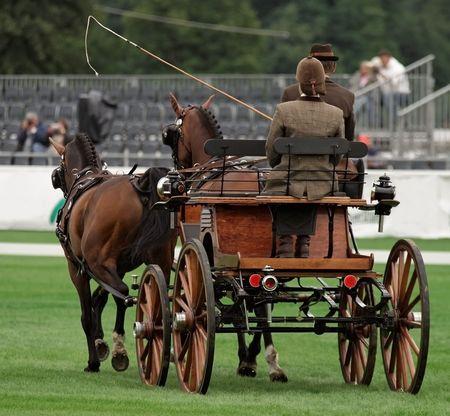 carreta madera: Par de competencia de la conducci�n de caballos: doma cl�sica