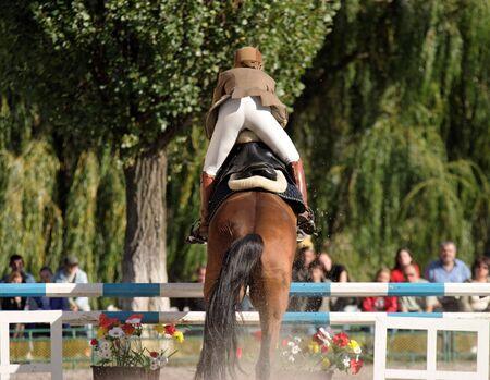salto de valla: Competencia de jinete de salto de caballo  Foto de archivo