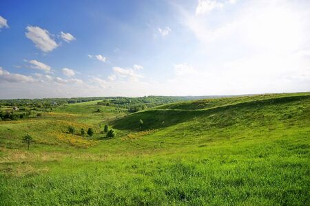panoramic spring-summer landscape Stock Photo - 6657017