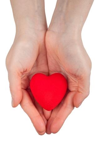 Herz-Symbol in Händen Standard-Bild - 10029301