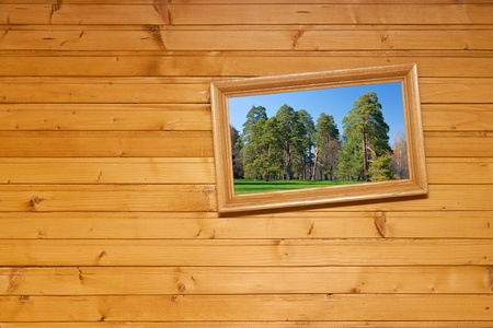 nature picture: Inclined picture on wooden wall Stock Photo