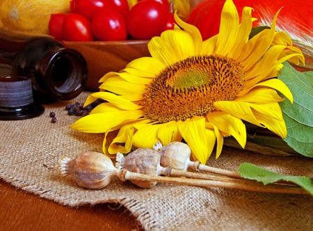 Autumnal yield of vegetables with sunflower still life photo