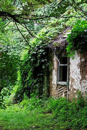 abandoned farmhouse abandoned farmhouse: abandoned peasants house