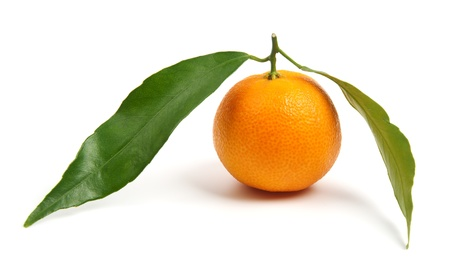 Tangerine with leaves isolated on white Stock Photo - 15766176