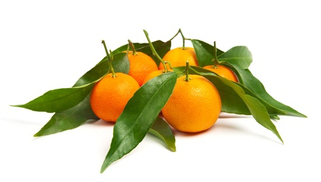 Tangerines with leaves isolated on white Stock Photo - 15766425