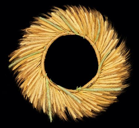 cultivo de trigo: Corona de espigas de trigo aislado en negro
