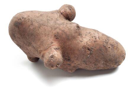 Funny shaped poteto isolated on white Stock Photo