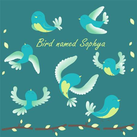 named: The bird named Sofia flying in different directions. Cartoon characters , can be used to design childrens books or magazines .
