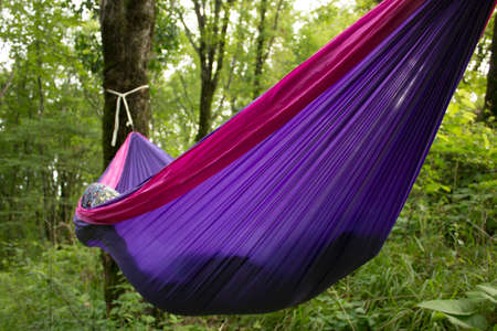 hushed: soft hammock on trees in forest summer
