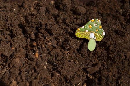 genteel: beautiful brooch mushroom handmade jewelry in wood Stock Photo