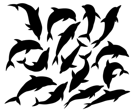 fish silhouette: Set of dolphin silhouettes, isolated on white