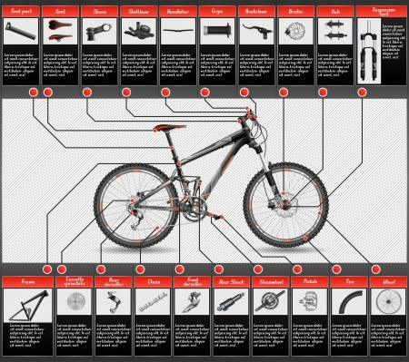 bicycle frame: MTB doble suspensi�n Vectores
