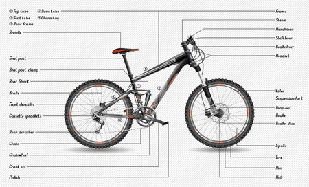 Full-suspension MTB scheme Stock Vector - 20241437