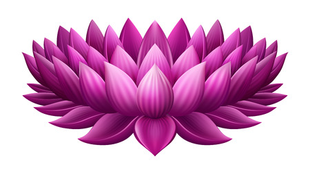 buddha: Isolated  pink lotus, EPS 10 contains transparency Illustration