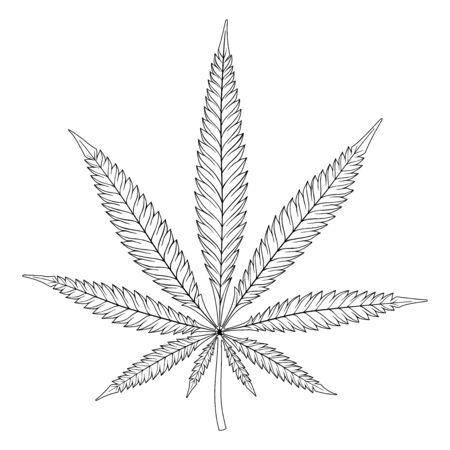 Feuille de chanvre noir et blanc, signe de cannabis sur fond blanc.