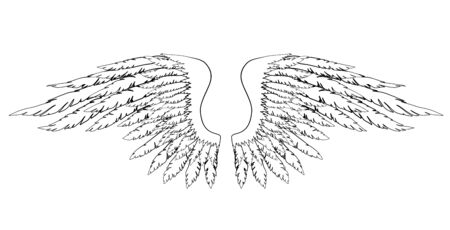 Black and white hand-drawn wings of angel or archangel, element of insignia or coat of arms. EPS 8.