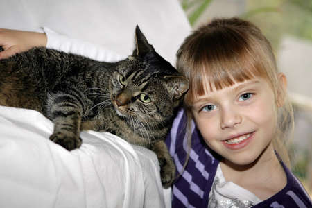 little girl with grey cat Stock Photo