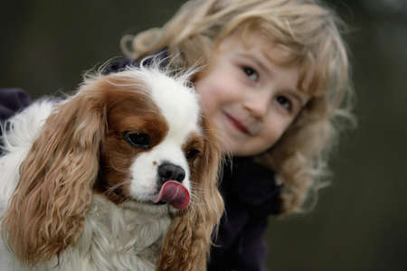 cavalier: young kaukasian girl with spaniel dog