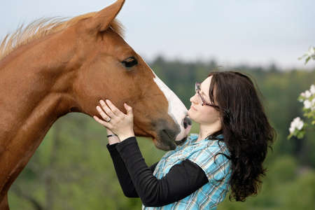 Quarterhorse kissing a woman Stock Photo - 7611451