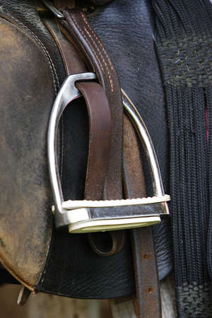 blanket horse: stapes - close-up of the detail of a saddled horse