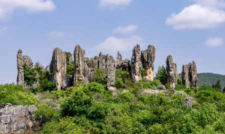 Shilin Stone Forest, Yunnan Province - China. The Stone Forest or Shilin is a notable set of limestone formations located in Shilin Yi Autonomous County.