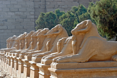 Avenue of the ram-headed Sphinxes in Karnak Temple - Luxor, Egypt. The avenue of sphinxes consist of statues with lions bodies and the heads of rams, symbolizing Amun.