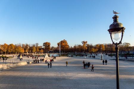 Paris, France - November 18, 2018: Autumn in the Jardin des Tuileries, Paris, France Editorial
