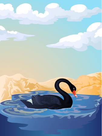 black swan swiming Vector